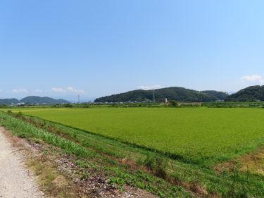 県道清水麻生津線 新日野川橋の現状 2019.8