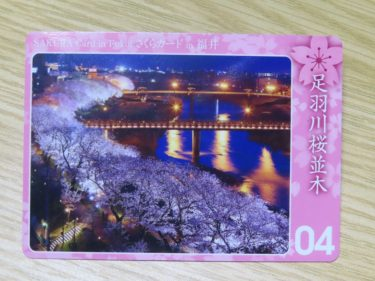 福井県内15か所の桜の名所がカードになりました